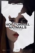 Noční zvířata